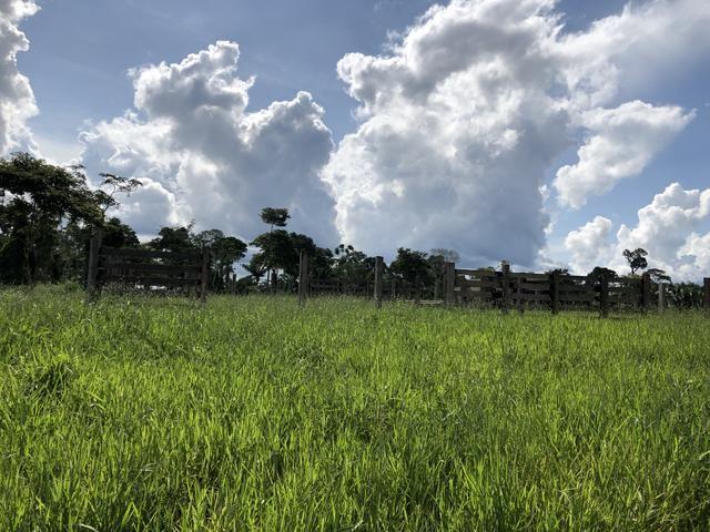 Fazenda Medindo 257,00 ha (Documentada, Apta a fazer financiamentos) - Foto 4