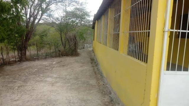 Ótima propriedade de 2.5 hectares, com casa sede, em Avencas de Cima-PE - Foto 5