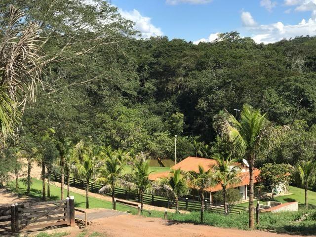 Fazenda 207 Alqueires Municipio Cocalzinho,Fazenda toda pronta