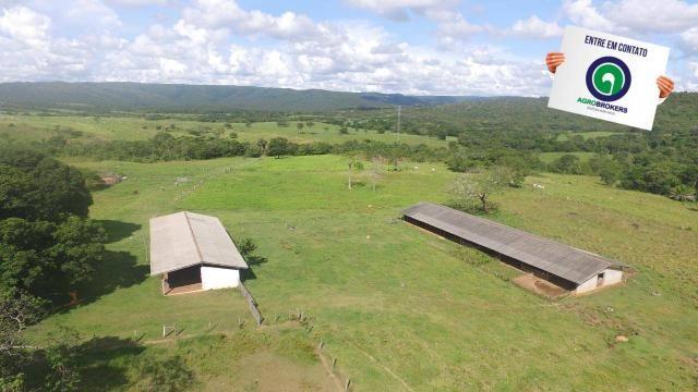 Fazenda 1.040 ha acorizal - Foto 3