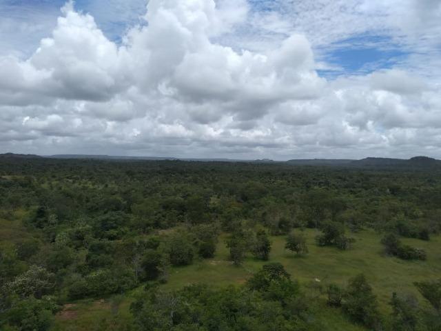 Propriedade Rural de 576 hectares de Mata e Cerrado no Piauí - Foto 7