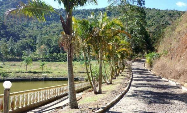 Sítio rural à venda, Providência, Teresópolis. - Foto 11