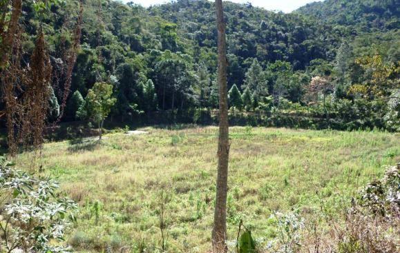 Sítio rural à venda, Providência, Teresópolis. - Foto 16