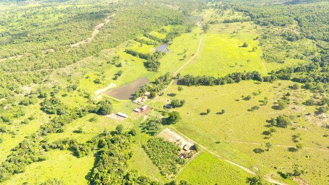Fazenda com 561 há (116 alq) maior valorização pecuarista próximo a capital - Foto 2
