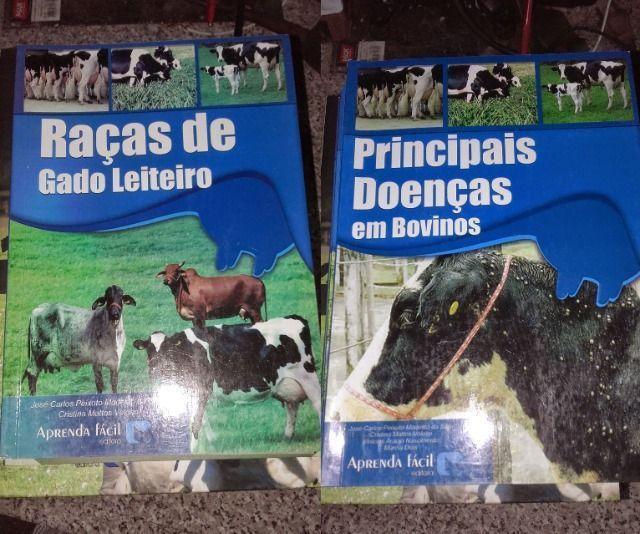 Livro de Bovinocultura - Foto 3
