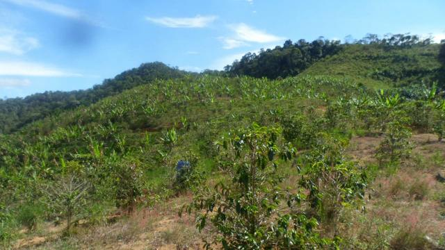 Estou vendendo ótimo terreno muito bom tem água lugar bom sinal telefon - Foto 7