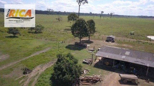 Fazenda à venda com 1.306 hectares, no distrito de Triunfo/RO - Foto 2