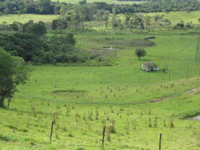 Itapetininga Região Fazenda 100 Alqueires - Foto 18