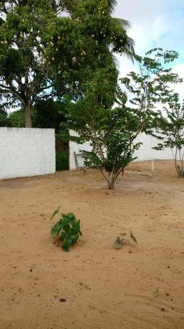 Excelente Sitio em Alagoinhas-BA - Foto 15