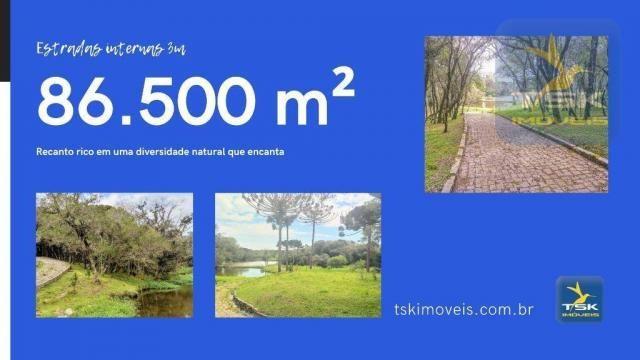 CH0369 Chácara à venda 86500 m² por R$ 1.850.000 São José dos Pinhais/PR 34 min centro Cur - Foto 5