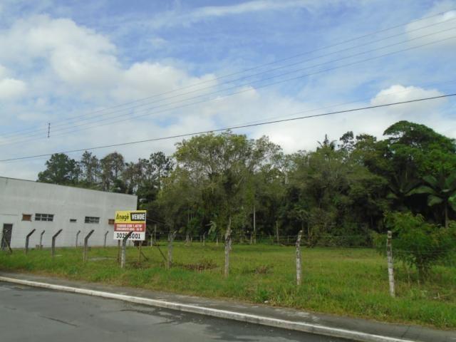 Terreno para alugar em Pirabeiraba, Joinville cod:00444.010 - Foto 12