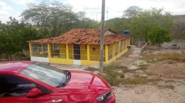 Ótima propriedade de 2.5 hectares, com casa sede, em Avencas de Cima-PE - Foto 4