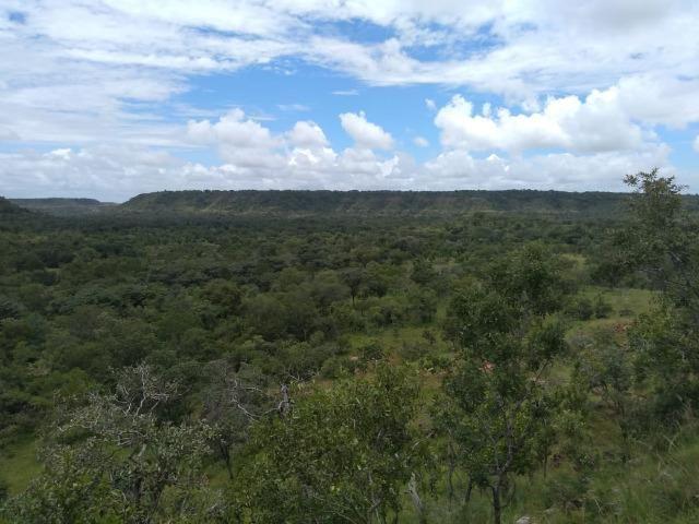Propriedade Rural de 576 hectares de Mata e Cerrado no Piauí - Foto 3