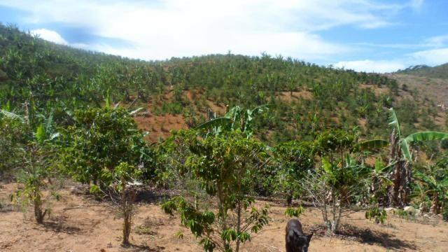 Estou vendendo ótimo terreno muito bom tem água lugar bom sinal telefon - Foto 9