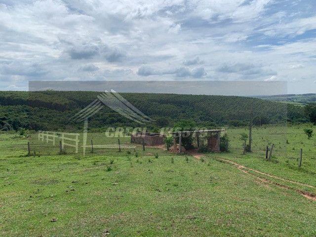 Fazenda com 234 hectares (Nogueira Imóveis Rurais) - Foto 14