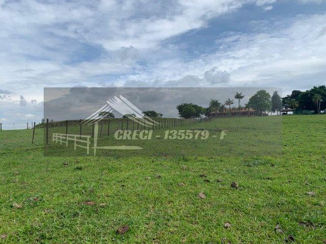 Fazenda com 234 hectares (Nogueira Imóveis Rurais) - Foto 10