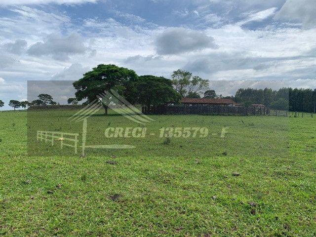 Fazenda com 234 hectares (Nogueira Imóveis Rurais) - Foto 6