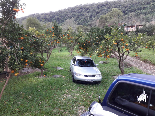 Chácara ótima localização na BR 116com casa  próximo à Caxias do Sul  - Foto 3