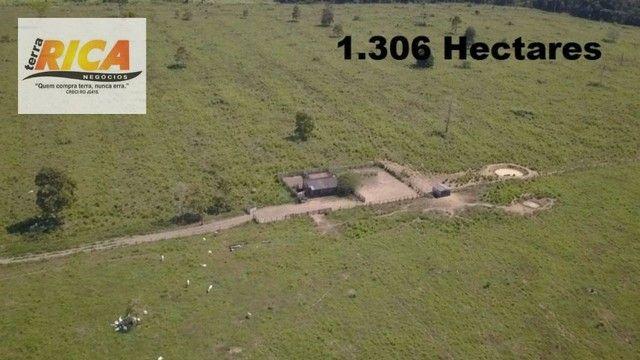 Fazenda à venda com 1.306 hectares, no distrito de Triunfo/RO