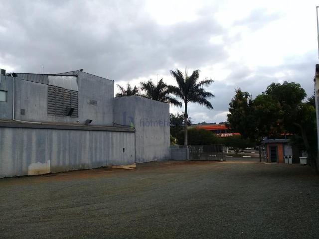 Terreno para alugar em Jardim conceição (sousas), Campinas cod:TE012242 - Foto 5