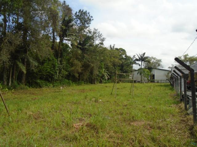 Terreno para alugar em Pirabeiraba, Joinville cod:00444.007 - Foto 9