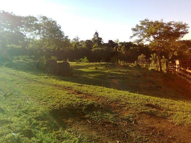 Vendo-Troco Sítio (área de terra rural) entre Leópolis e Cornélio Procópio PR - Foto 2