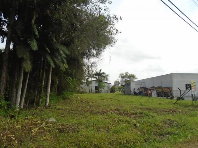 Terreno para alugar em Pirabeiraba, Joinville cod:00444.007 - Foto 3