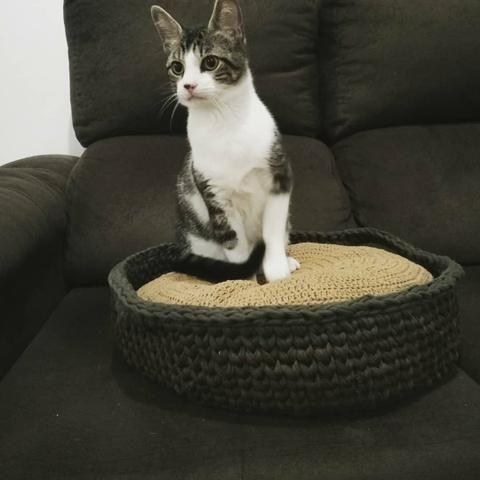 Cama tipo cesto com almofada Pet