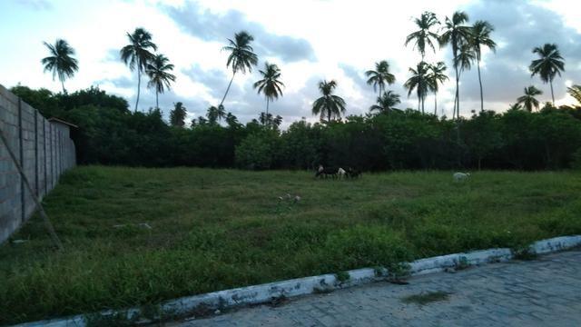 Vendo terreno em São Miguel dos Milagres - Foto 3