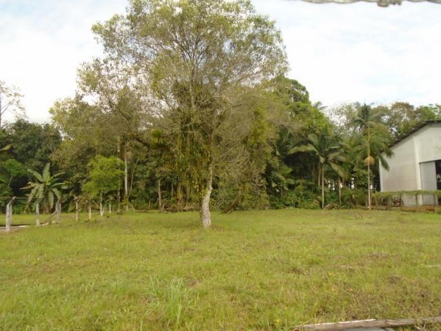 Terreno para alugar em Pirabeiraba, Joinville cod:00444.010 - Foto 6