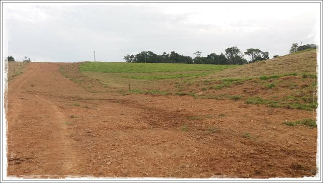 Vendo com urgência meu terreno em Ibiúna - Foto 3
