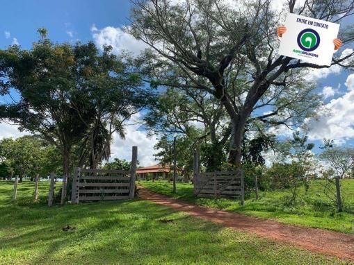 Fazenda 1.040 ha acorizal - Foto 6