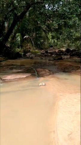 Propriedade Rural de 576 hectares de Mata e Cerrado no Piauí - Foto 9