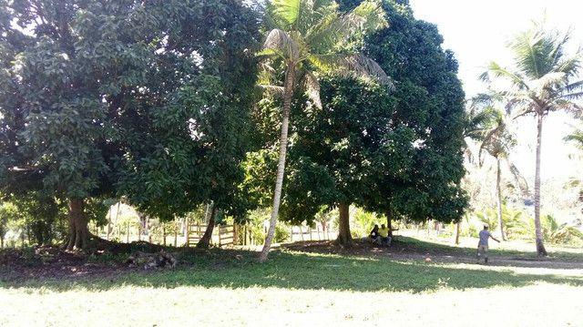 Imóvel rural no interior da Bahia.  - Foto 7