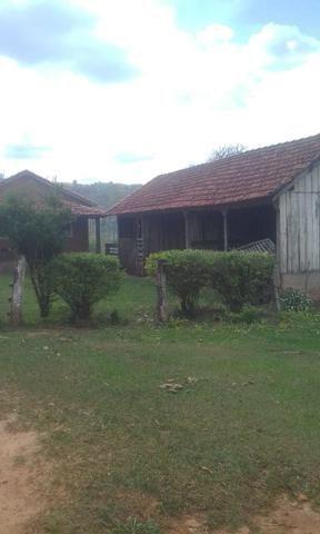 Fazenda Agricultura e Pecuária-Completa Arrendamento - Foto 8