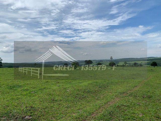 Fazenda com 234 hectares (Nogueira Imóveis Rurais) - Foto 3