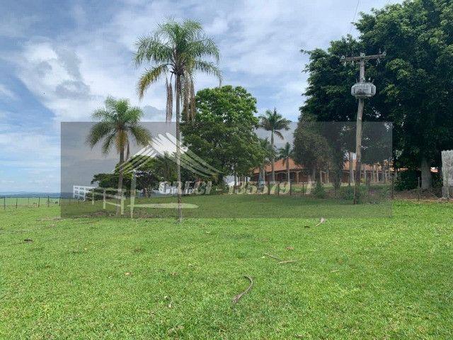 Fazenda com 234 hectares (Nogueira Imóveis Rurais) - Foto 18