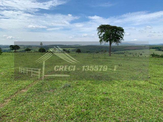 Fazenda com 234 hectares (Nogueira Imóveis Rurais) - Foto 5