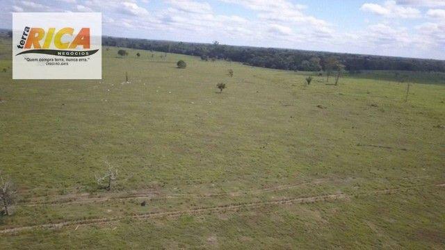 Fazenda à venda com 1.306 hectares, no distrito de Triunfo/RO - Foto 7