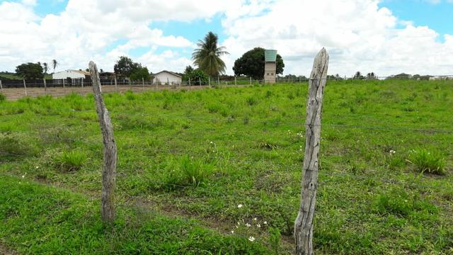 Fazenda com 170 hectares na região de monte alegre - Foto 13