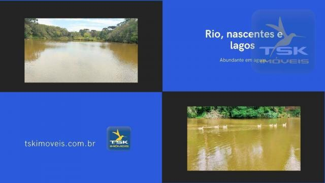 CH0369 Chácara à venda 86500 m² por R$ 1.850.000 São José dos Pinhais/PR 34 min centro Cur - Foto 6