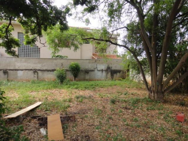 Terreno à venda em Vila santa cruz, Sao jose do rio preto cod:V5329 - Foto 10