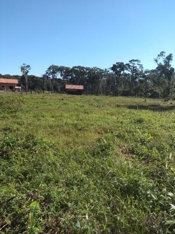 Sítio em Araquari aceito troca - Foto 6