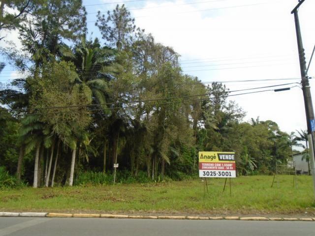 Terreno para alugar em Pirabeiraba, Joinville cod:00444.007 - Foto 13