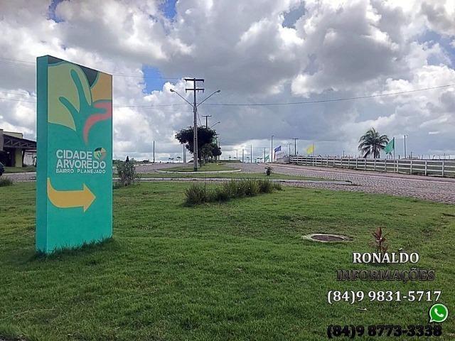 A partir de R$ 245,00 a parcela no Jardim Arvoredo! - Foto 15