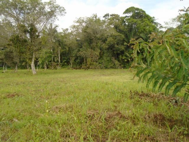 Terreno para alugar em Pirabeiraba, Joinville cod:00444.010 - Foto 9
