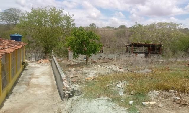 Ótima propriedade de 2.5 hectares, com casa sede, em Avencas de Cima-PE - Foto 13