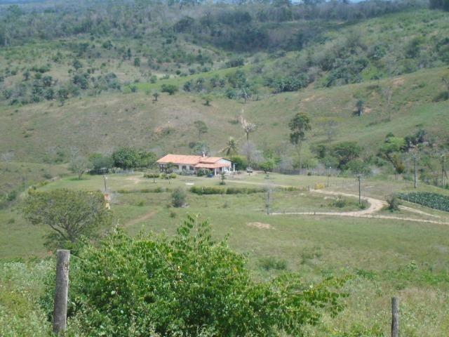 Mundo Novo Fazenda - Foto 19