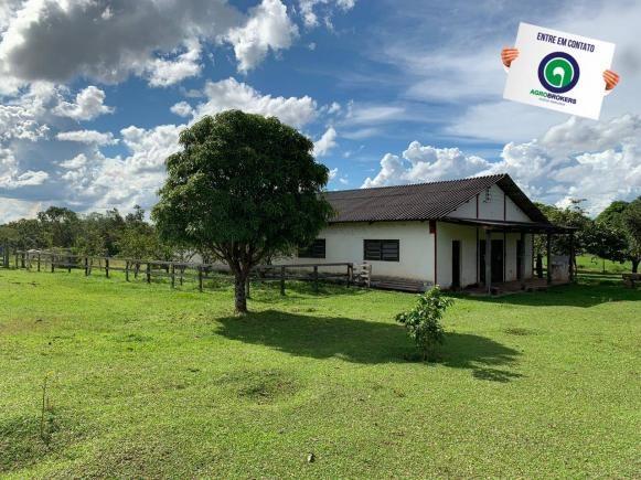 Fazenda 1.040 ha acorizal - Foto 20