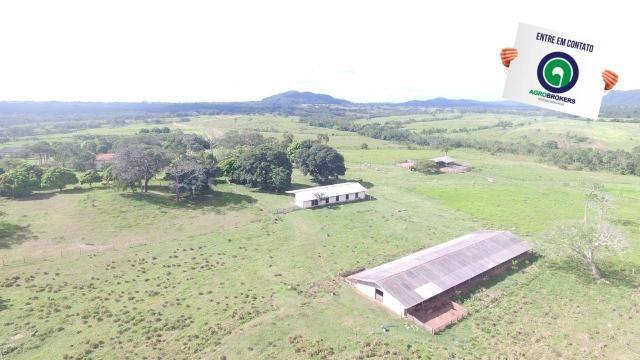 Fazenda 1.040 ha acorizal - Foto 2
